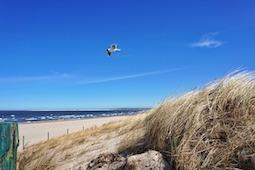 Start in den Urlaub an der polnischen Ostsee. Foto (Swinemünde): Pixabay
