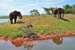 Namibia und Südafrika sind bei den Veranstaltern der DER Touristik wieder buchbar. Foto: Pixabay
